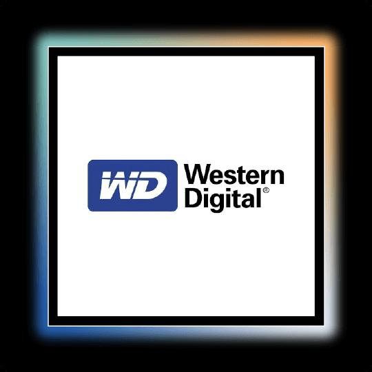 Western Digital - PICS Telecom - Global Telecoms